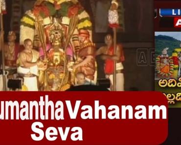 Srivari Brahmotsavam 2015 – Hanumantha Vahana Seva – Tirumala